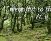 wandering aengus poem