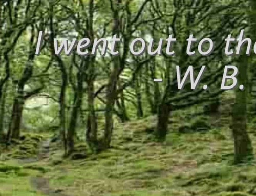 Wandering Aengus Poem – I Went Out to the Hazel Wood